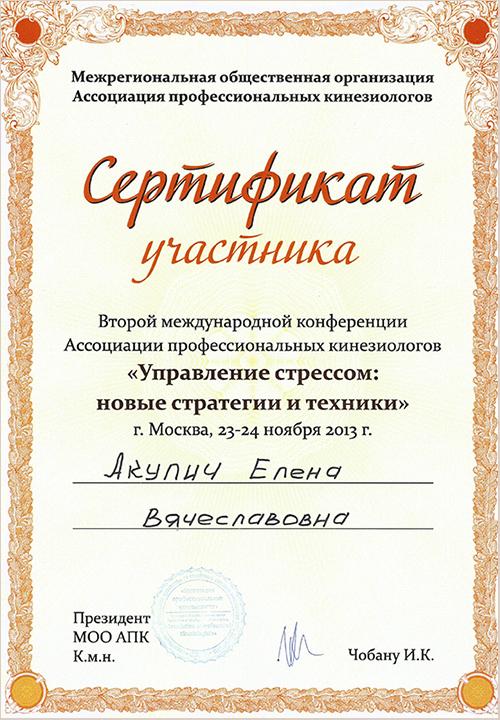 sertifikat2013